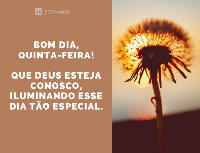 Bom dia, quinta-feira! Que Deus esteja conosco, iluminando esse dia tão especial.