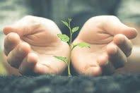 10 Mensagens de esperança que farão você acreditar no futuro