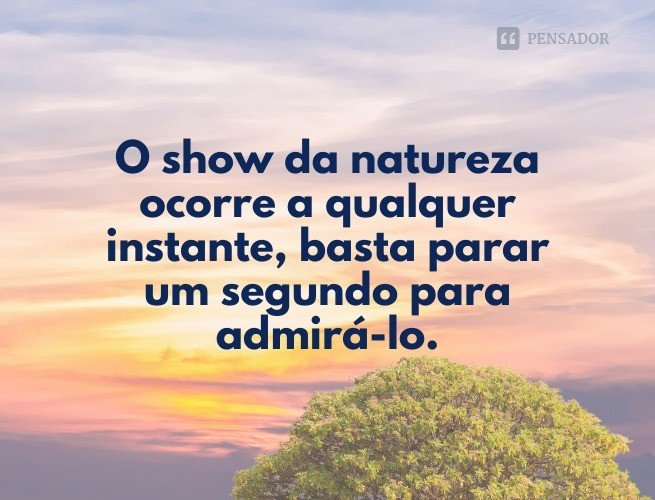 O show da natureza ocorre a qualquer instante, basta parar um segundo para admirá-lo.