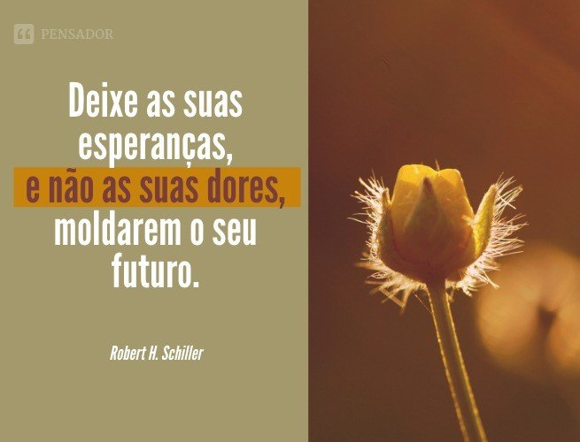 Deixe as suas esperanças, e não as suas dores, moldarem o seu futuro.  Robert H. Schiller