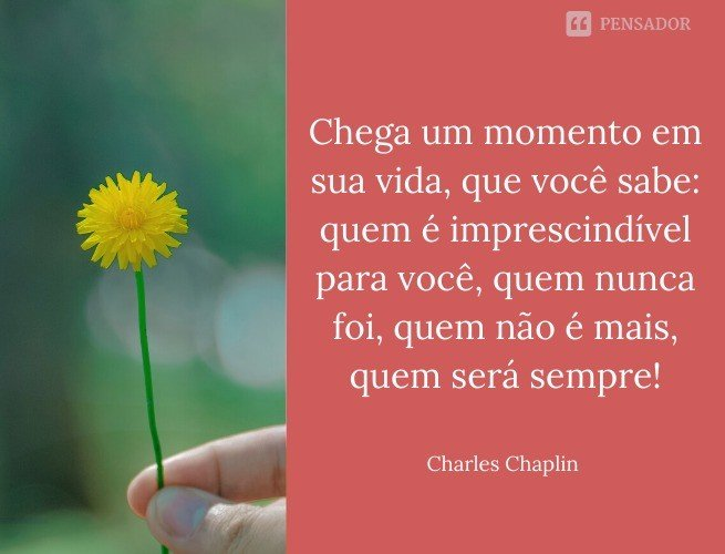 Chaplin 8