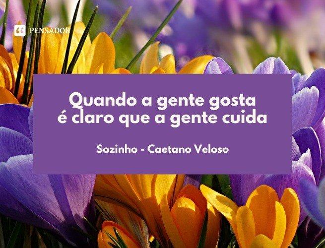 Quando a gente gosta é claro que a gente cuida  Sozinho - Caetano Veloso