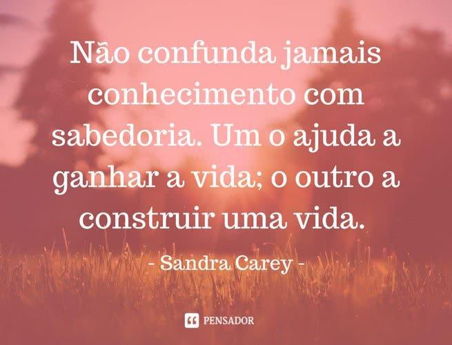 """""""Não confunda jamais conhecimento com sabedoria. Um o ajuda a ganhar a vida; o outro a construir uma vida"""". Sandra Carey"""