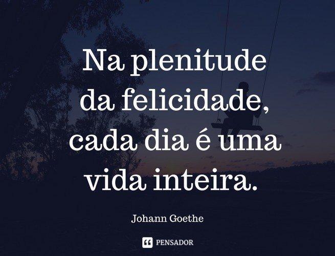 Na plenitude da felicidade, cada dia é uma vida inteira. Johann Goethe