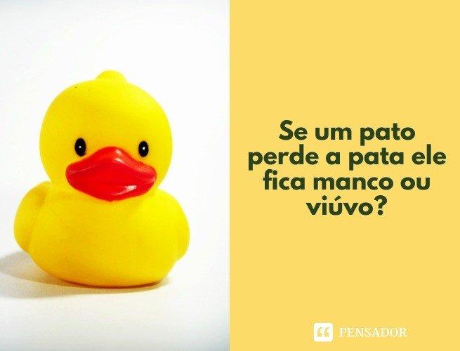 Se um pato perde a pata ele fica manco ou viúvo?