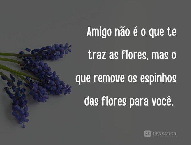Amigo não é o que te traz as flores, mas o que remove os espinhos das flores para você.