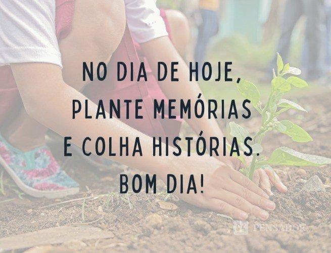 No dia de hoje, plante memórias e colha histórias. Bom dia!