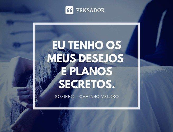 Eu tenho os meus desejos e planos secretos. Sozinho - Caetano Veloso