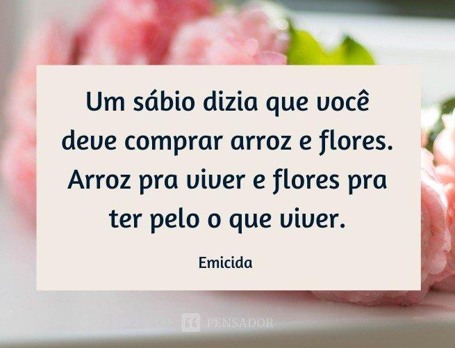 Um sábio dizia que você deve comprar arroz e flores. Arroz pra viver e flores pra ter pelo o que viver.  Emicida (música: Só Isso)