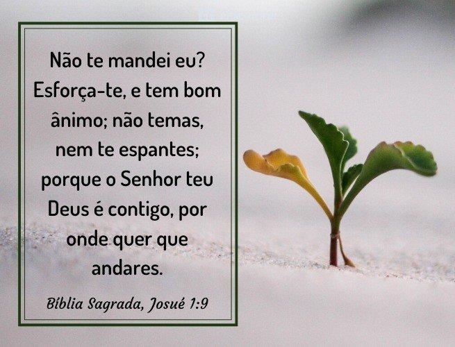 Pensador_Frases Evangélicas_1