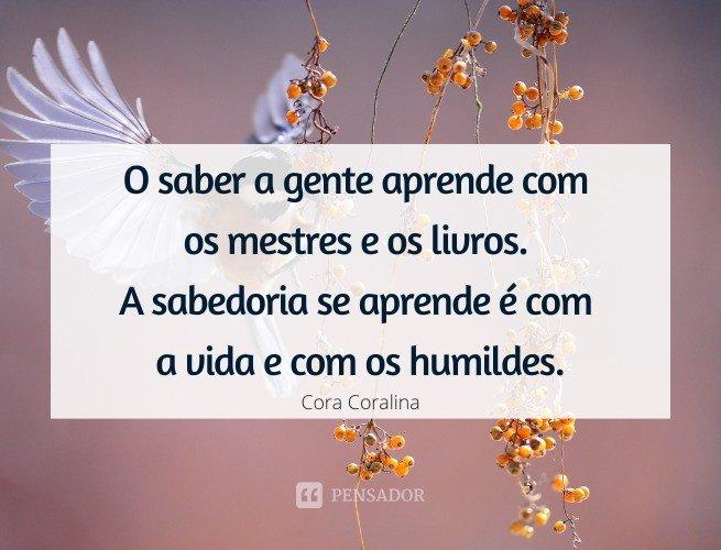 O saber a gente aprende com os mestres e os livros. A sabedoria se aprende é com a vida e com os humildes.  Cora Coralina