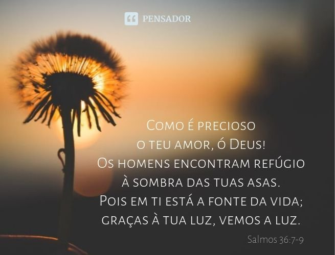 versículo de gratidão pela vida