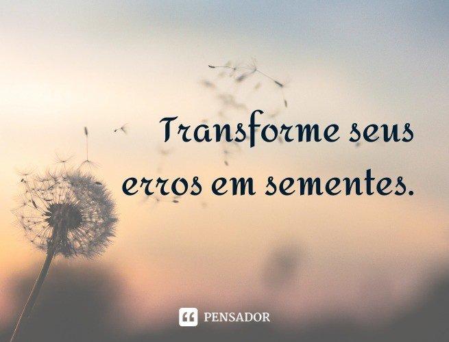 Transforme seus erros em sementes.
