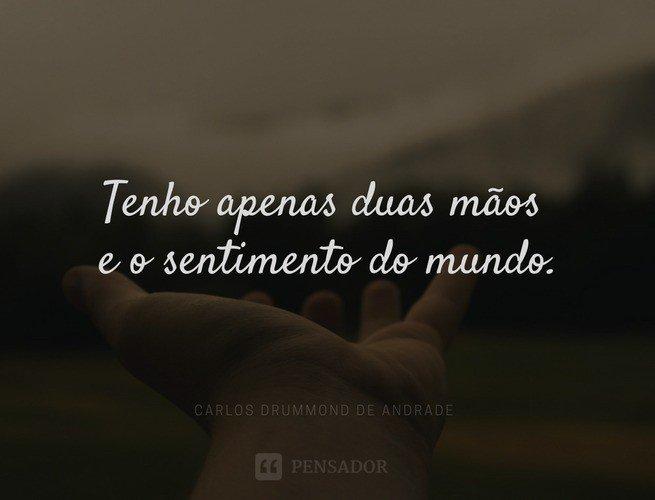 Ama Poesia Conheça 21 Grandes Poetas Brasileiros Pensador