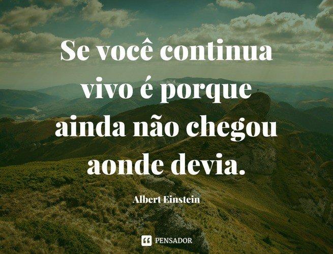 Se você continua vivo é porque ainda não chegou aonde devia. Albert Einstein
