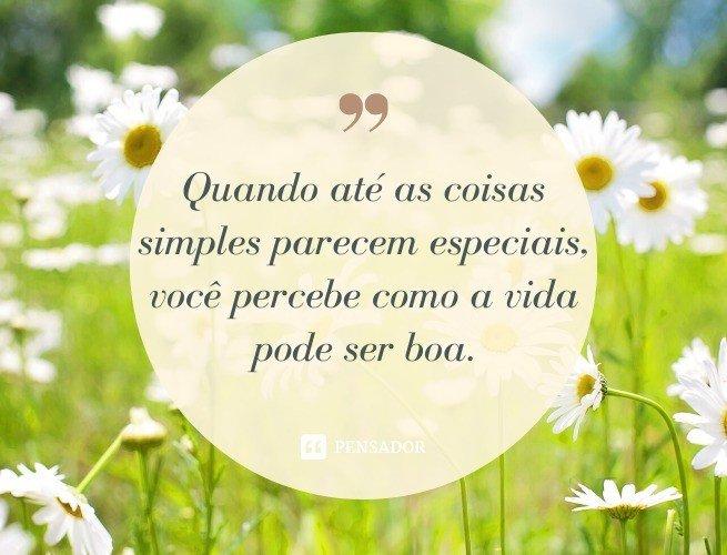 Quando até as coisas simples parecem especiais, você percebe como a vida pode ser boa.