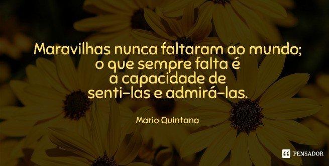 Maravilhas nunca faltaram ao mundo; o que sempre falta é a capacidade de senti-las e admirá-las.  Mario Quintana
