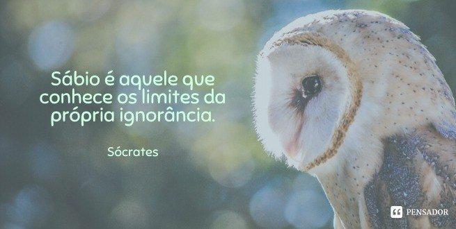 Sábio é aquele que conhece os limites da própria ignorância.  Sócrates