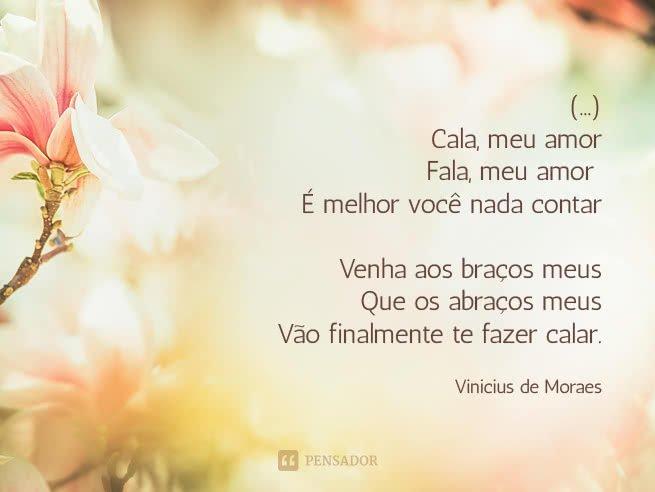 vinicius_de_moraes_cala_meu_amor_fala_meu_amor.jpg